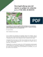Orquídeas Moxviquil alberga más del 50