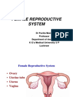 Female_reproductive_system[Compatibility Mode]