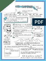 Lipton (2).pdf