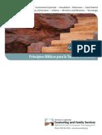 Principles_of_Biblical_Decision_Making-_spanish