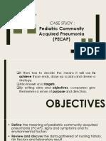 Case-Study-PCAP