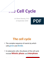 Biokimia-Cell Cycle 13Sept2019
