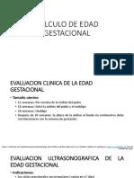 CALCULO DE EDAD GESTACIONAL