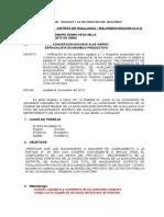 INFORME INGENIERO ESPECIALISTA ECONOMICO (1)