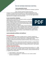 VASCULARIZAÇÃO DO SISTEMA NERVOSO CENTRAL.docx