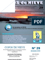 Copos de Nieve 29 - Diciembre 2010