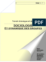 Travail en sociologie - le groupe et l'individu