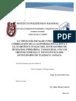 LA_TIPOLOGIA_ESCALAR_COMO_BASE_DE_LA_COR.pdf