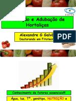 Nutrio e Adubao de Hortalias ALEXANDRE.pdf