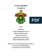 BIOKIM KEL3 PAPER VIT B3