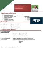 Curriculum(1).docx