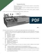 Formação de carvão.pdf