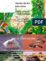 adaptacindelosseresvivos-121002193126-phpapp02