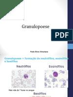 Granulopoese 2019.2.pdf