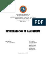 trabajo de gas natural
