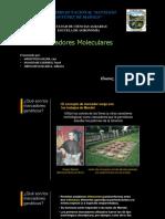 marcadores moleculares.pptx