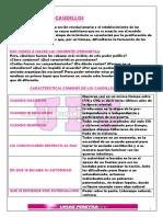03 - RESUMEN COMPLETO DE CAUDILLOS - IECA TOMO 2 - APORTE LUCAS UEU DERECHO 2019.
