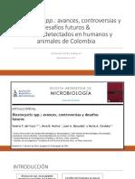 Blastocystis spp.