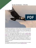 El Mirador de los Cóndores – Chonta.docx
