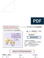 Genética_Introduccion.pptx