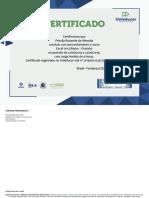 certificado de Conclusão - Excel básico.pdf