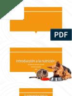 Fundamentos basicos sobre la nutrición