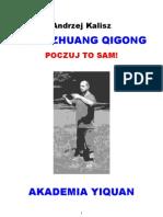 Zhan Zhuang Qigong. Poczuj to sam!