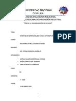 INFORME IPI OFICIAL.docx