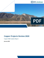 Copper Projects Review - Jan20