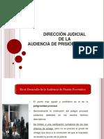 DIRECCION JUDICIAL DE AUDIENCIA DE PRISION PREVENTIVA