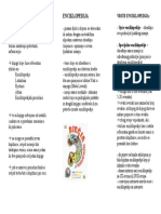 Enciklopedija - letak
