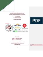 revisi LAPORAN PKL INDUSTRI (rika).docx