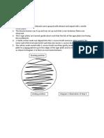 HKDSE Biology SBA (Antimicrobial test)