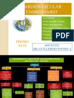 Aparato Cardiovascular Embrionario Fonseca