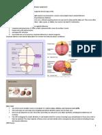 NCM107-MCN.PEDIA-NURSING-SL-SEMIFINAL-HANDOUTS-docx