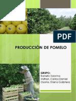 FEPA POMELO Formosa