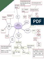 mapa semantico de residuos sólidos