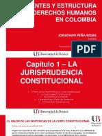 DD.HH. EN COLOMBIA [Cap. 1-2-3-4].pptx