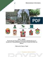 FABRICA DE PULPA Y PAPEL.pdf