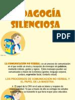 NUEVAS DIAPOSITIVAS PEDAGOGIA SILENCIOSA