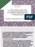 CITOLOGIA DE LOS CAMBIOS BENIGNOS