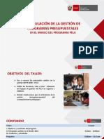 Copy of Taller_PELA_final_exposición.pptx