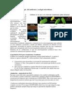 Clase de Microbiologia Del Ambiente o Ecologia Microbiana