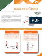 Características de un vector_PDF [AE5]