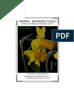 Narcissus ×parautensis Fernández Casas & Gómez Murillo (2017)