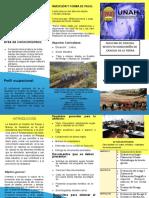 Plan-de-Estudio-Maestria-en-Gestion-del-Riesgo-y-Manejo-de-Desastres