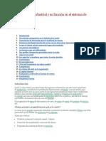 La ingeniería industrial y su función en el sistema de ventas.docx
