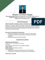 CV Brayan LLivicura Vargas_Naranjal