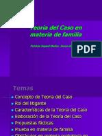 TEORIA DEL CASO EN MATERIA DE FAMILIA.pdf
