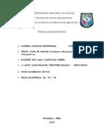 MONOGRAFIA  DE CULTIVOS INDUSTRIALES (1).docx